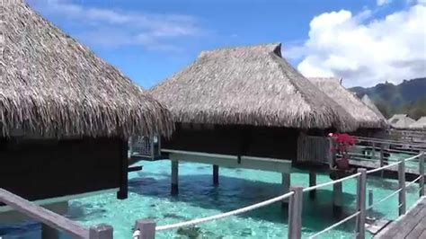 overwater bungalow max martine hilton moorea king overwater bungalow 4k video youtube