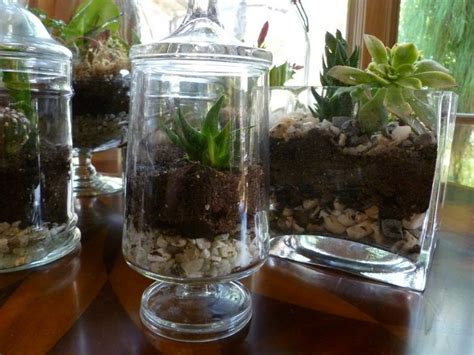 Handmade Terrariums - diy how to make your own green terrarium