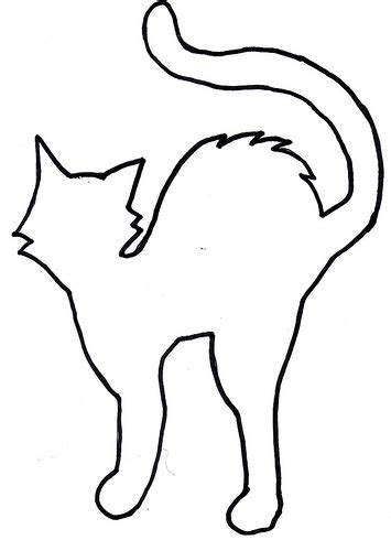shelterpop cat template flickr photo sharing