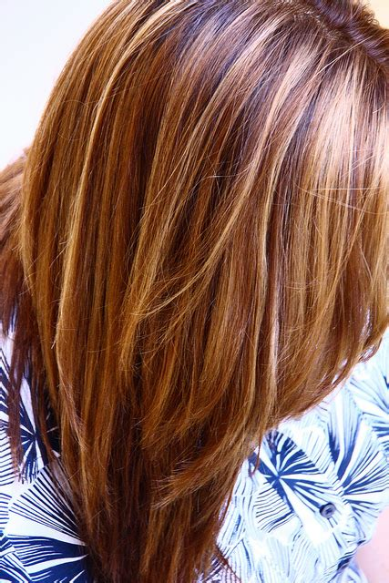 honey colored highlights warm brown with and honey highlights original