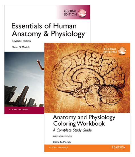 anatomy coloring book pearson value pack essentials of human anatomy physiology global