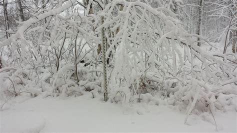 snow flurries weather paul douglas weather column flurries and sub zero wind