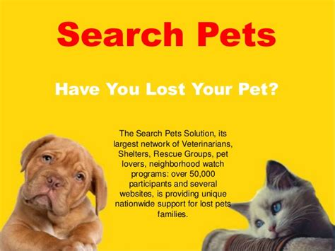 search pets lost pets finder how to find a lost pet