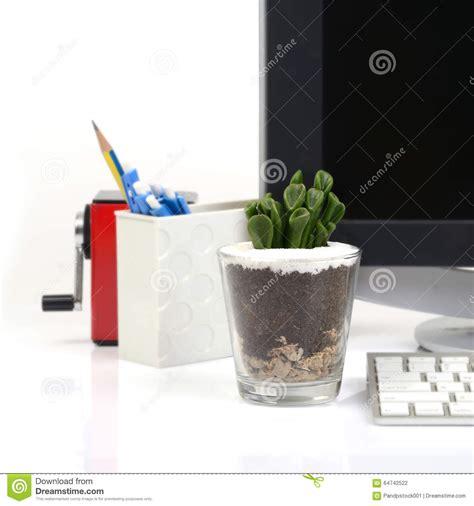 small cactus  office deak stock photo image
