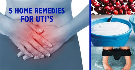 5 home remedies for urinary tract infections