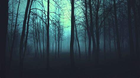 el bosque oscuro the bosque images reverse search