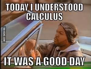 Calculus Meme - calculus meme lynnuniversity study inspiration
