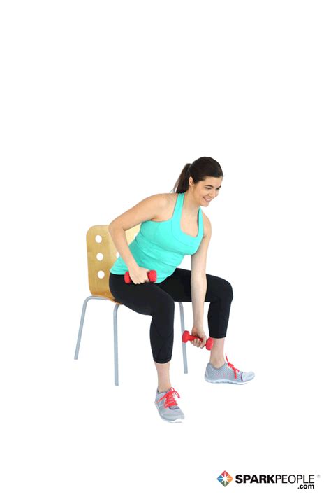 Dumbbell Chair Exercises by Seated Dumbbell Concentration Curls Exercise Demonstration