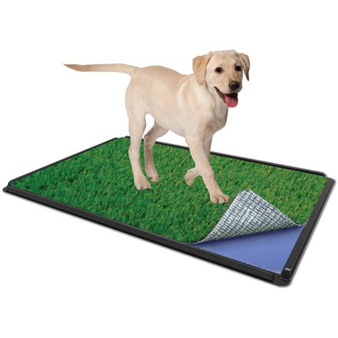 how to puppy pad a puppy puppy pads walmart