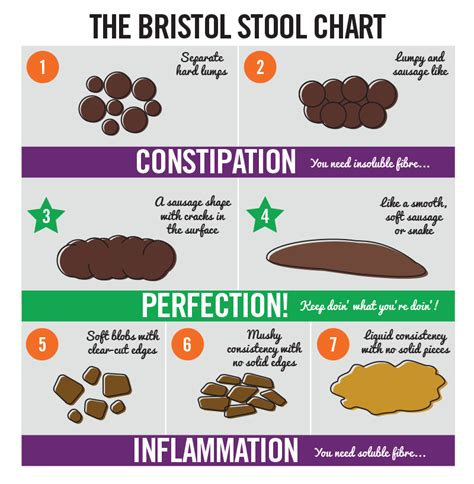 Human Stool Types by Digest The Facts On Bowel Health Active Nation
