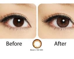 Softlens Geo Hc244 Geo Nudy Brown Lens Ch 624 Contacts Cow