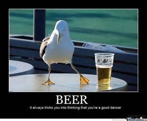 Funny Beer Memes - animals and beer 16 funniest memes collection bajiroo com