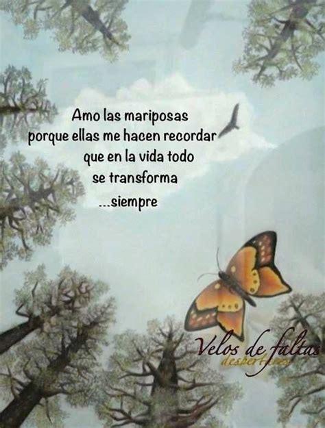 imagenes de mariposas lindas con frases las mariposas hacen recordar que en la vida todo se
