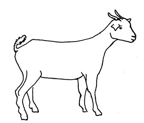 how to draw new year goat goat line drawing clipart best