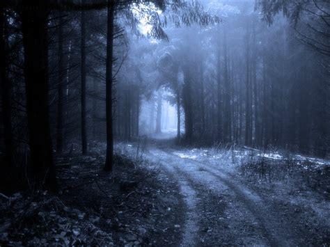 imagenes de oscuros records bosques oscuros la inspiraci 243 n megamanforever36