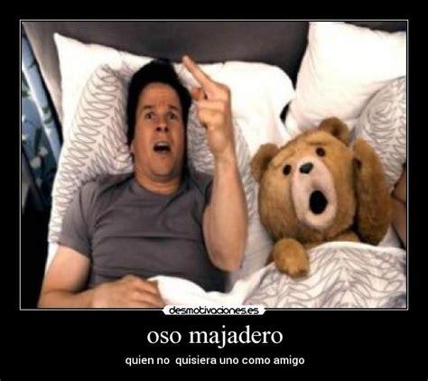 imagenes groseras del oso ted im 225 genes y carteles de teddy pag 3 desmotivaciones