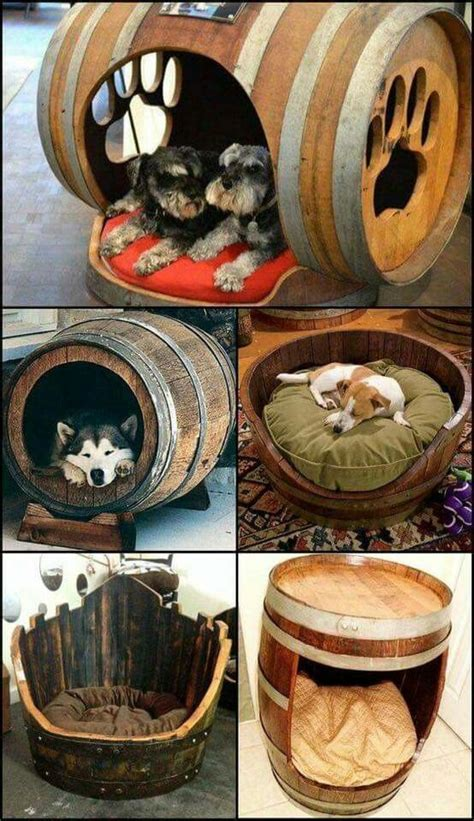cool bed ideas 25 best ideas about beds on pet beds