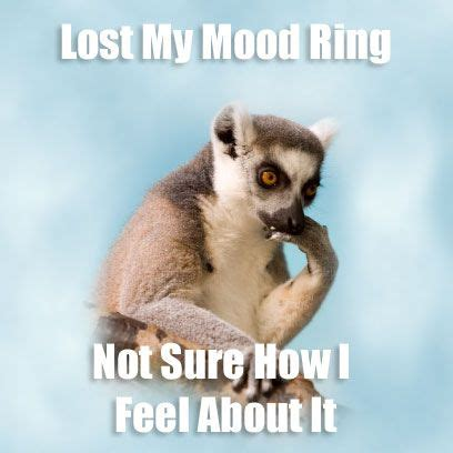 Mood Ring Meme - funny lemur puns pinterest funny stuff humor and