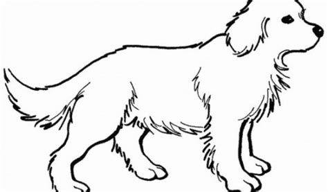 coloring pages of dogs online get this online coloring pages of dogs 17433