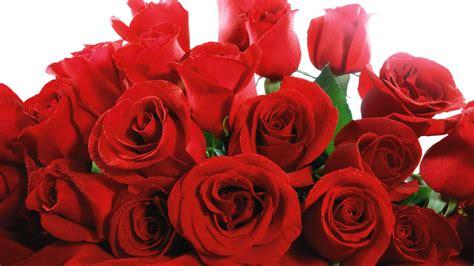 fiori si regalano ad un uomo quante si regalano ad una donna donne magazine