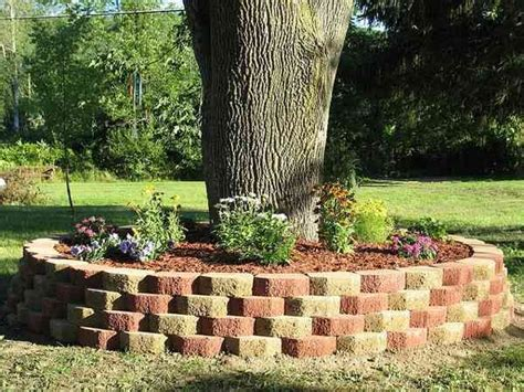 flower beds around trees pin by carla delucia on for the home pinterest