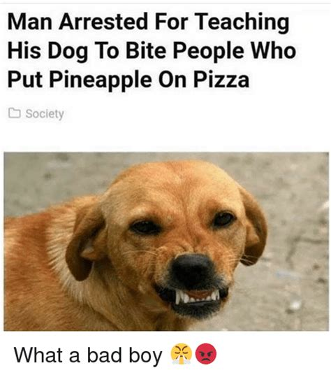 is pineapple bad for dogs 25 best memes about pineapple on pizza pineapple on pizza memes