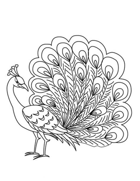 coloring page peacock free printable peacock coloring pages coloring 4