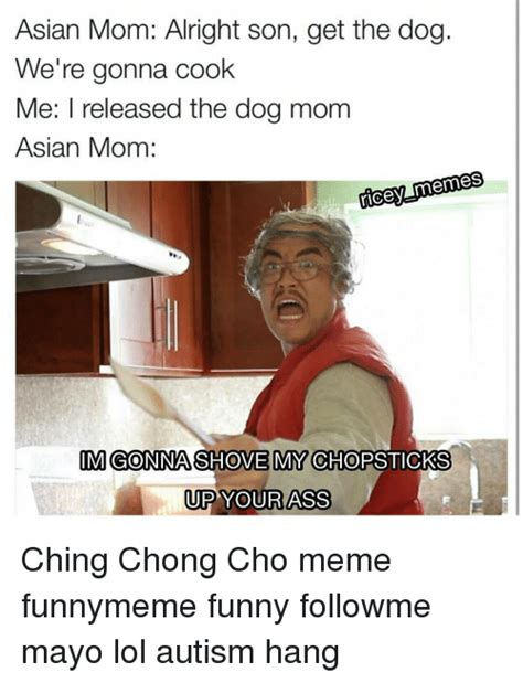 Asian Mom Meme - asian dog meme 28 images what asians have for dinner ling ling the neighbors are you no get