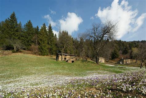 giardini valtorta valle brembana pigolota di valtorta il giardino delle