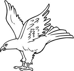 eagle coloring pages free printable eagle coloring pages for