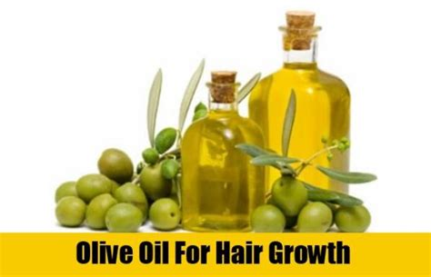 What Type Of Olive Is Best For Hair by Olive For Hair Growth