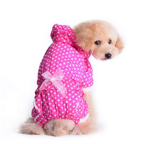 cheap small dogs pin cheap small clothes and accessories image search results on