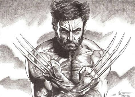 Wolverine Drawing how to draw wolverine drawing lessons