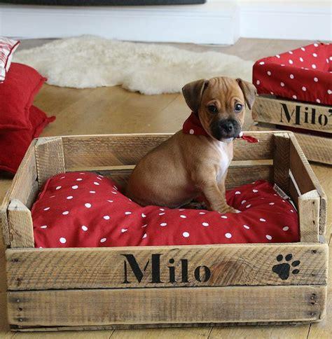 lit pour petit chien lit et panier pour chien