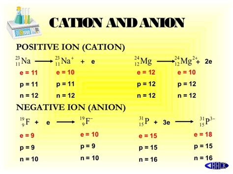 cation anion revisi