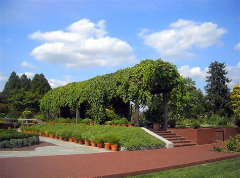 file united states national arboretum garden jpg