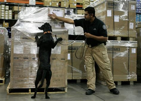 tsa dogs sachin vaidya in tsa announces new bomb sniffing team at dulles airport 2 of 3
