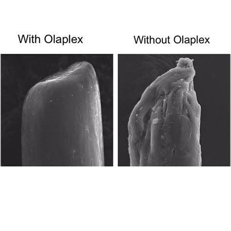 does olaplex really work now offering olaplex bond strengthing dawn clark colour