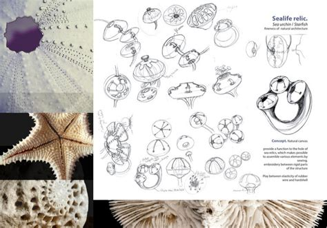decorative sketches architecture and design influenced by nature in early 20th century books 3d printed jewelry inspired by nature part 1 fashionlab