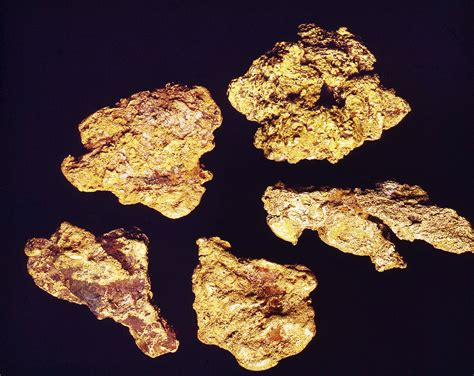 Finding Gold Find Gold Nuggets Archives Finding Gold Golden Tips For Prospectors