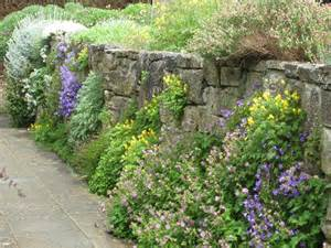 Rock Garden Wall A Of Informal Gardens Honeysuckle