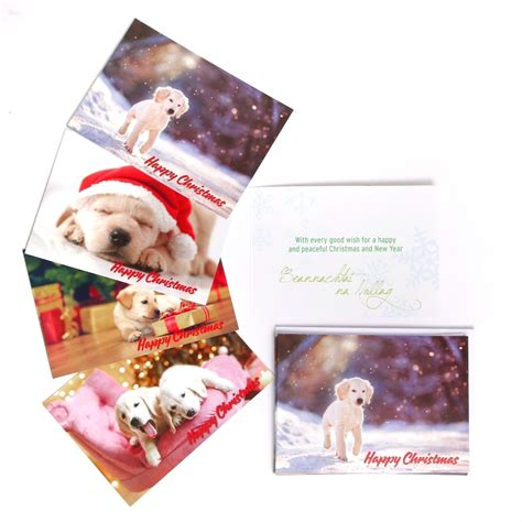 guiding for the blind cards guide dogs for the blind cards chrismast cards
