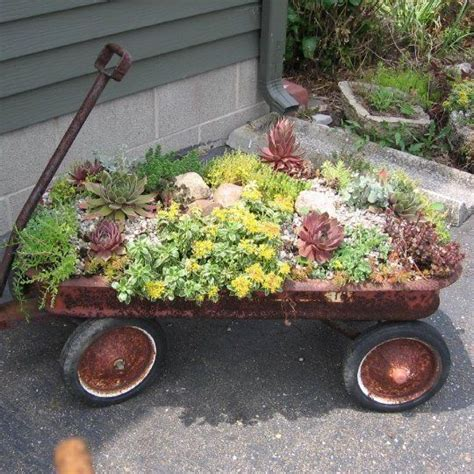 Hens And Planter Ideas by 17 Best Ideas About Hens And On