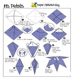 Origami Flower Diagram - flowers origami iris flowers paper origami guide