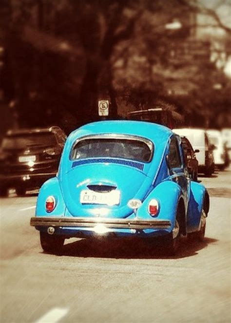 punch buggy car with eyelashes 128 best slug bug images on pinterest vw beetles