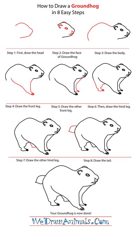 groundhog day that step how to draw a groundhog