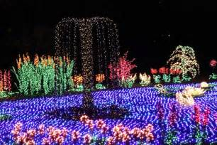 bellevue lights botanical garden garden d lights festival bellevue events happenings