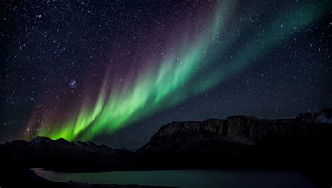 aurora northern lights colorful starry sky night