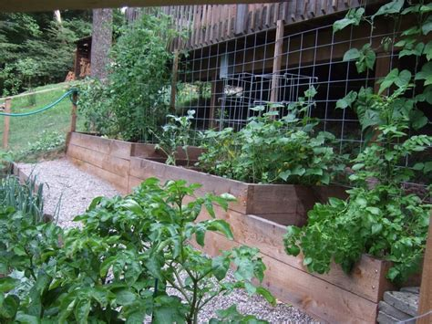 1000 Images About Terraced Gardens On Pinterest Terraced Vegetable Garden
