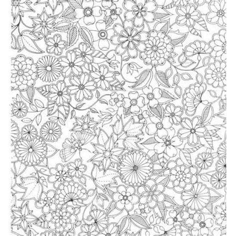 secret garden coloring book outfitters secret garden an inky treasure hunt and colouring book